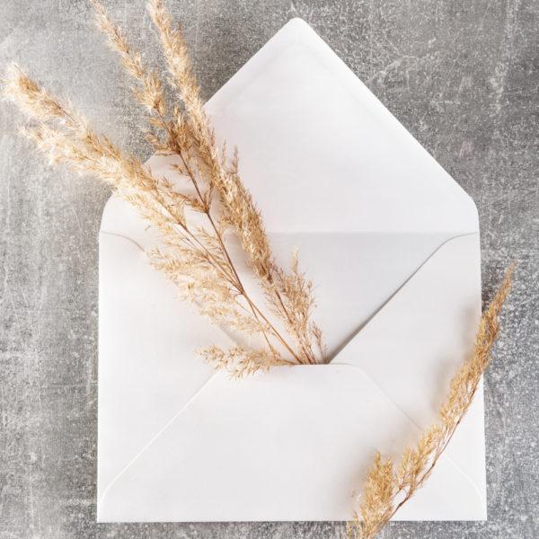 Kédles Kuvert mit Pampasgras